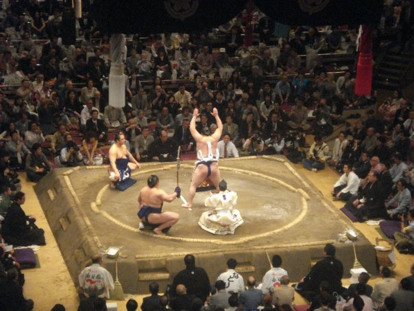 Sumo Tournaments – Chewy's Favourite Thing Ever