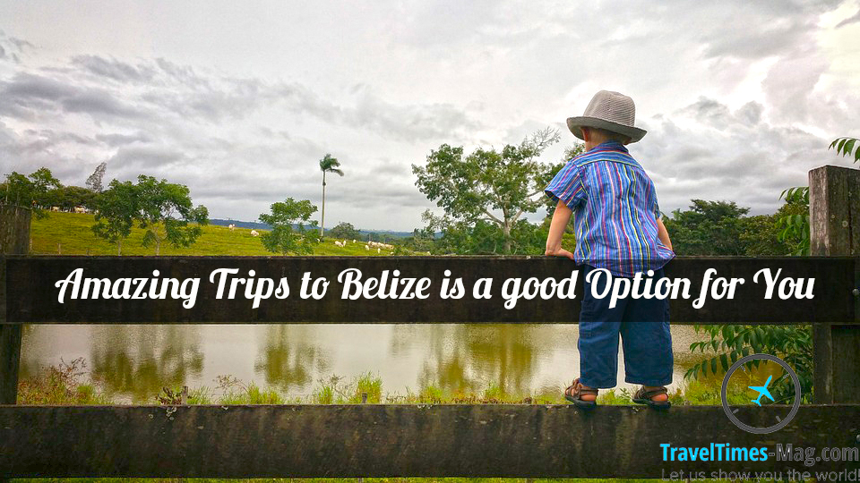 Amazing Trips to Belize is a good Option forYou