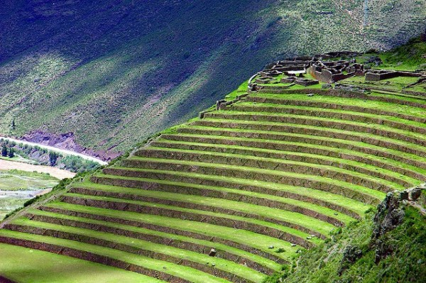 Best Three Interesting Terraces