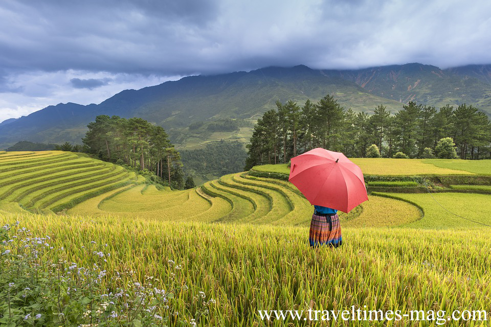 VIETNAM TRAVEL GUIDE'S DREAM TOUR PACKAGE FOR THE VISITORS